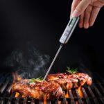 beste vleesthermometer